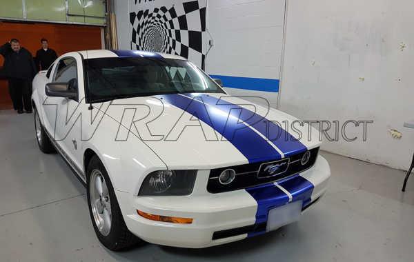 Fond Mustang – Satin Blue Chrome Stripes