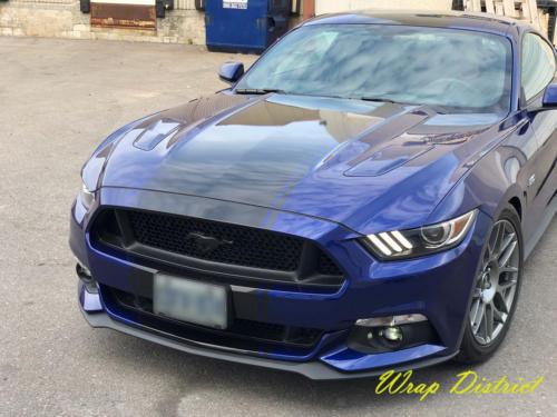 Ford Mustang Custom Stripes